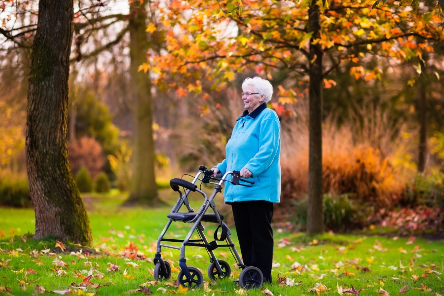 Guide to Buying the Best Rollator Walker