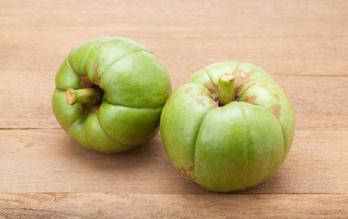 Can You Have a Slim Waist with Garcinia Cambogia
